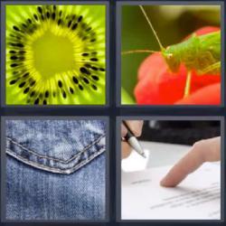 607 palabra respuesta nivel 1 fotos 4