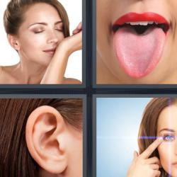 Respuesta 4 fotos 1 palabra 8 letras lengua oído ojo