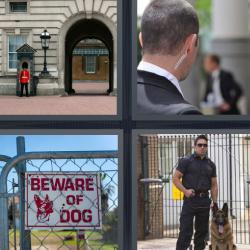 Respuesta 4 fotos 1 palabra 8 letras soldado inglés, guardaespaldas, vigilante de seguridad con un perro, letrero que dice Beware of dog