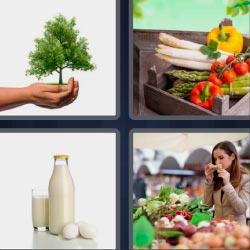 4 fotos 1 palabra 8 letras árbol, leche, huevos, verduras, mujer en el mercado